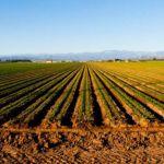 Poljoprivrednicima subvencije do 400 000 RSD