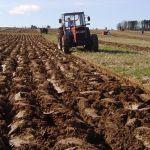 Vrednost poljoprivredne proizvodnje u 2016. pet milijardi dolara