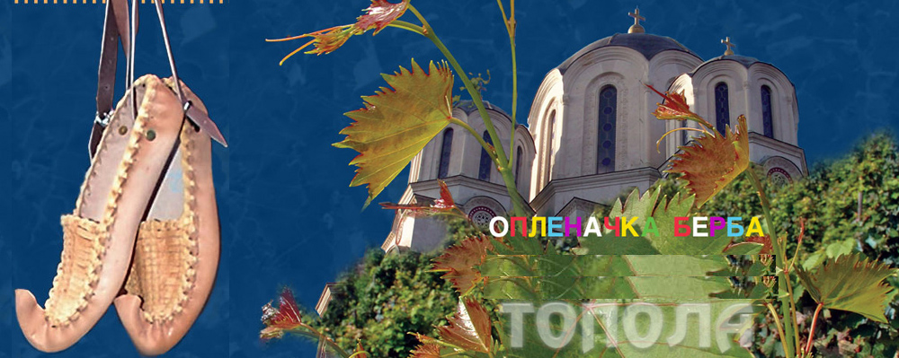 Oplenačka berba flajer/Izvor:TO Topola