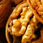 Srbija među prvih pet proizvođača oraha u Evropi