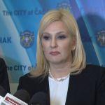 Ministarka tvrdi da je Velimir Ilić predstavio samo radnu verziju izveštaja