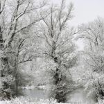 Zbog snega u Lučanima proglašena vanredna situacija