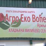 """Otvaranjem nove hladnjače, zadruga """"Agro Eko Voće"""" unapređuje proizvodnju maline"""