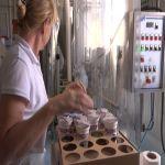Ljubiša Drinjaković: Zbog uvoza mleka bez carine ugrožena mnoga poljoprivredna dobra