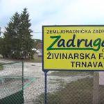 Ministar Krkobabić obišao čačanske zadrugare