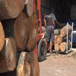 Metar drva do 5200 dinara