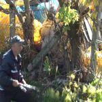 Čišćenje korita Kulinovačkog potoka u Atenici u akciji ,,100 kao 1″