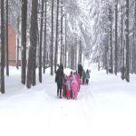 Mališani iz Guče i okoline na zimovanju na Zlatiboru
