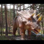 """Besplatne karte za Dino park na Zlatiboru za najmlađe pacijente bolnice ,,Studenica"""""""