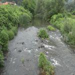 Uprkos padavinama vodostaj reka na području Milanovca stabilan