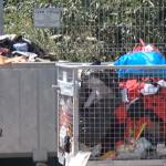 Počelo postavljanje reciklažnih ostrva na prigradskom i seoskom području Čačka