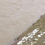 Ponovo primećena uljana mrlja u Lupnjači – iz SC Mladost kažu da u Moravi sme da se pliva za Časni krst