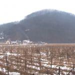 Gradi se nova industrijska zona u Lučanima – budućim investitorima 30 hektara u Krstačkom polju
